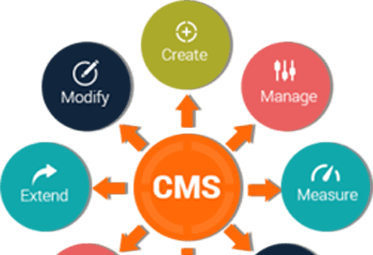 Custom CMS web development